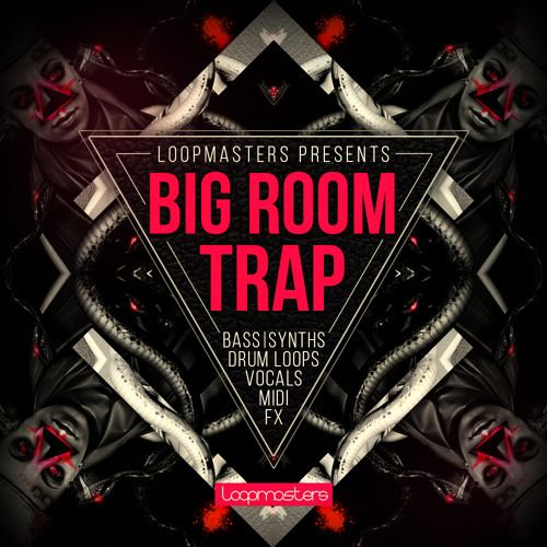 Loopmasters Big Room Trap MULTiFORMAT