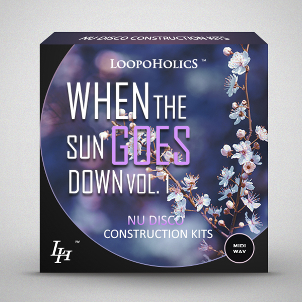 Loopoholics When The Sun Goes Down Vol.1 Nu Disco