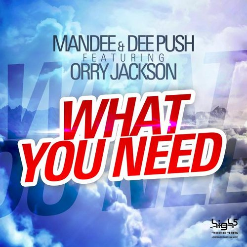 Mandee, Orry Jackson, Dee Push - What You Need