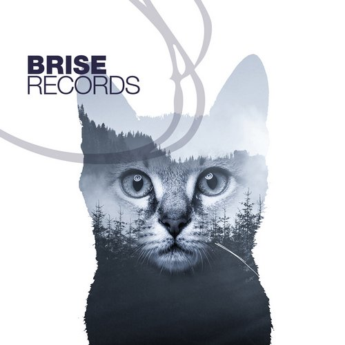 Marco Riemann, Patrick Testor – Boss Knows Why E.P. [BRISE073]