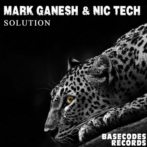 Mark Ganesh, Nic Tech - Solution [10094967]