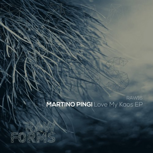 Martino Pingi - Love My Kaos EP [RAW0X16]