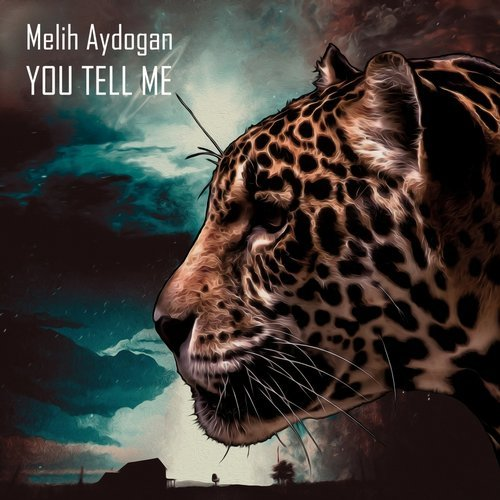Melih Aydogan - You Tell Me [DSB 087]