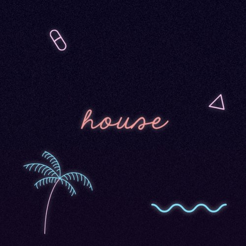 Miami Secret Weapons: House