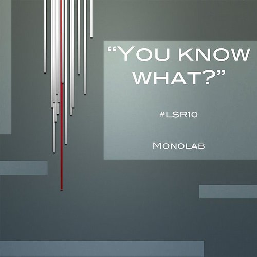 Monolab - You Know What? - Single [LSR10]