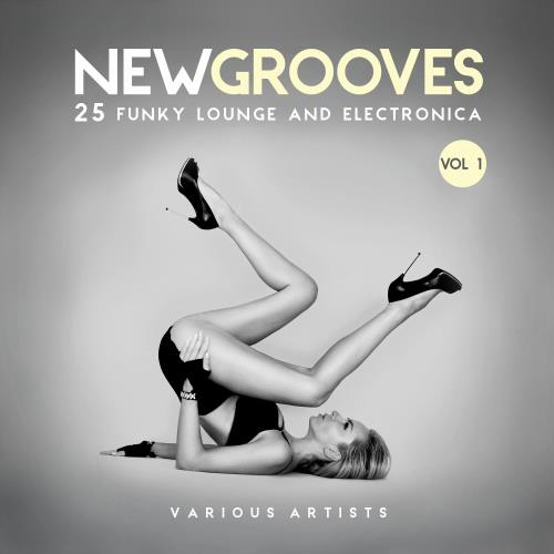 VA - New Grooves, Vol. 1 (25 Funky Lounge & Electronica) [NEWSKOOL001]