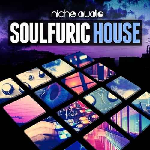 Niche Audio Soulfuric House (Ableton Live)