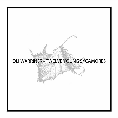 Oli Warriner - Twelve Young Sycamores [NEIN 057]