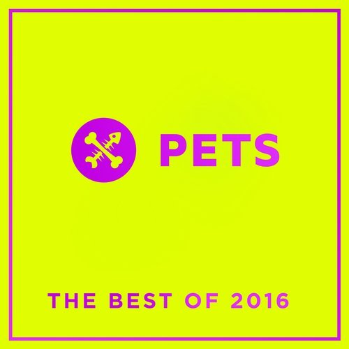 PETS Recordings The Best Of 2016 [PETSDIG003]