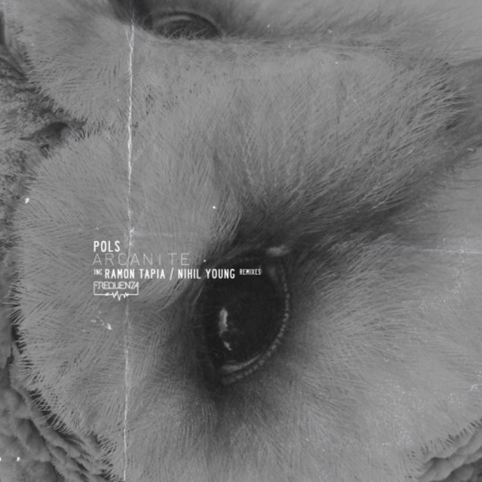 POLS – Lost in Berlin [FREQ1765]