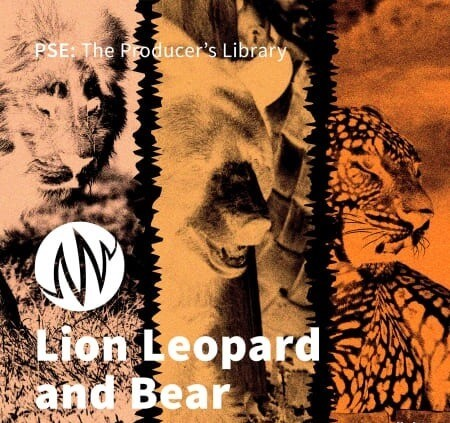 PSE: The Producers Library Lion Leopard and Bear WAV