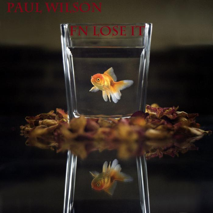 Paul Wilson - Fn Lose It [811868 831626]