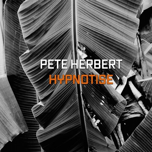 Pete Herbert - Hypnotize [FT003]