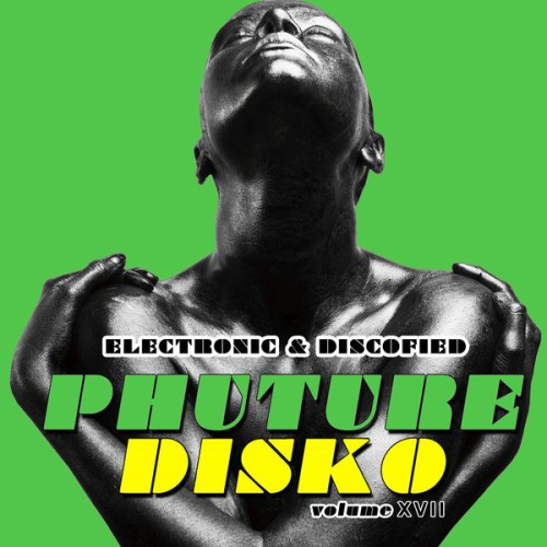 Phuture Disko Vol 17 - Electronic & Discofied [MDSCOMP119]