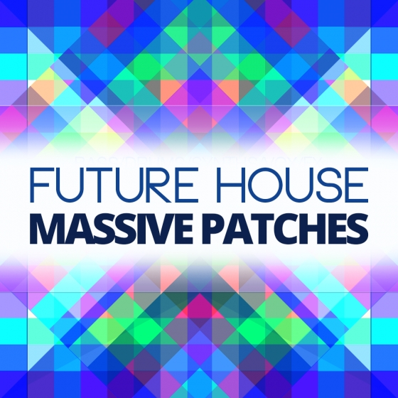 Premier Sound Bank Future House For Ni MASSiVE
