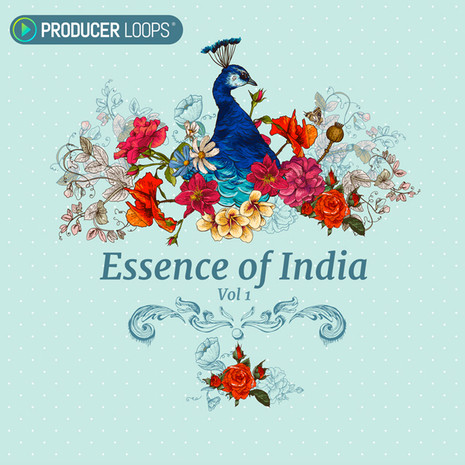 Producer Loops Essence of India Vol.1 ACiD WAV