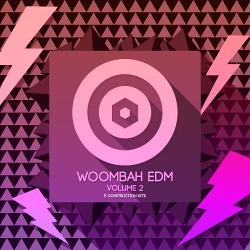 Prototype Samples Woombah EDM Vol.2