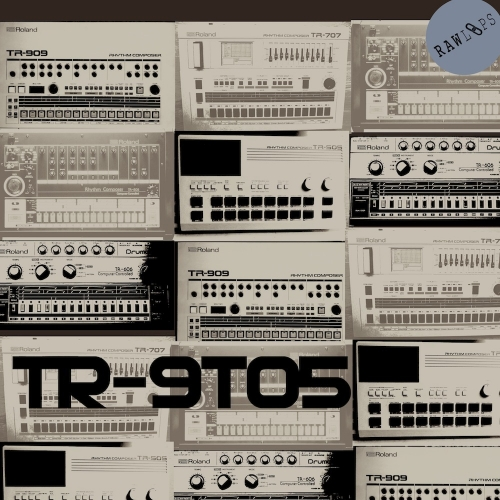 RAW LOOPS TR-9to5 Drum Hits