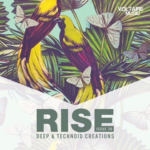 VA - Rise - Deep & Technoid Creations Issue 30 [VOLTCOMP594]