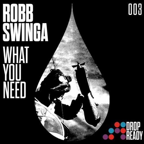 Robb Swinga - What You Need [003]