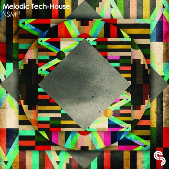 Sample Magic Melodic Tech-House MULTiFORMAT