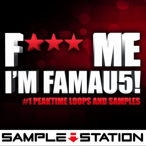 Sample Station Fxxx Me Im Famau5 ACID WAV REX