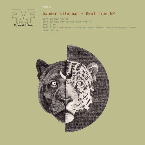 Sander Ellerman - Real Time EP [MOFI032]