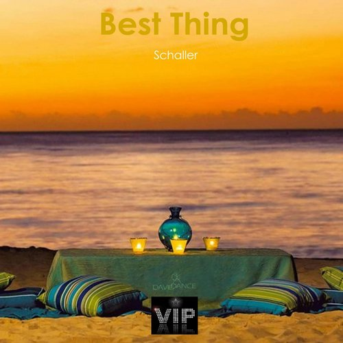Schaller - Best Thing - Single [VIP0113]