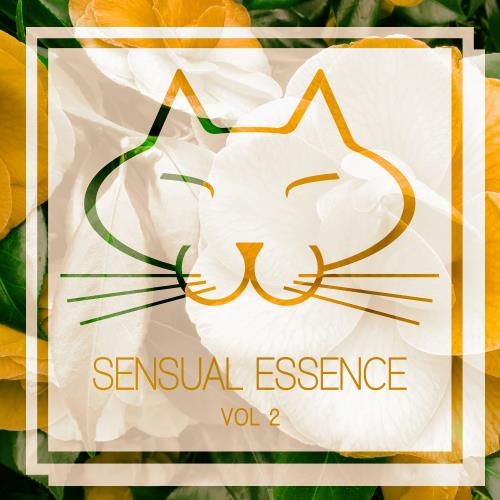 VA - Sensual Essence, Vol. 2 [MGL014]