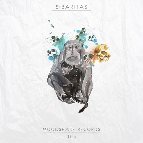 Sibaritas – Impossible To Meet You [MSR153]