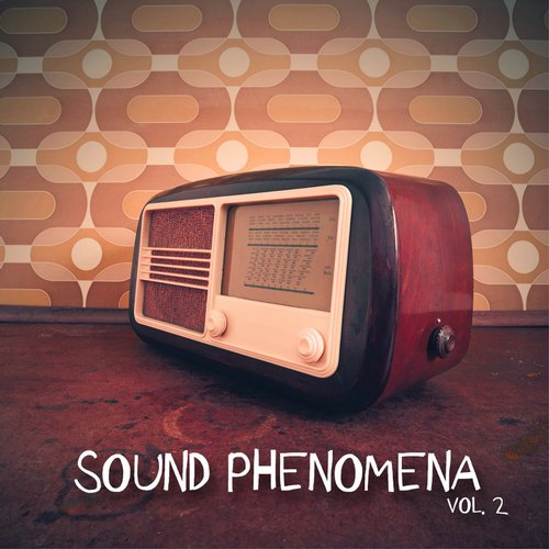 VA - Sound Phenomena, Vol. 2 [HPFLTD105]