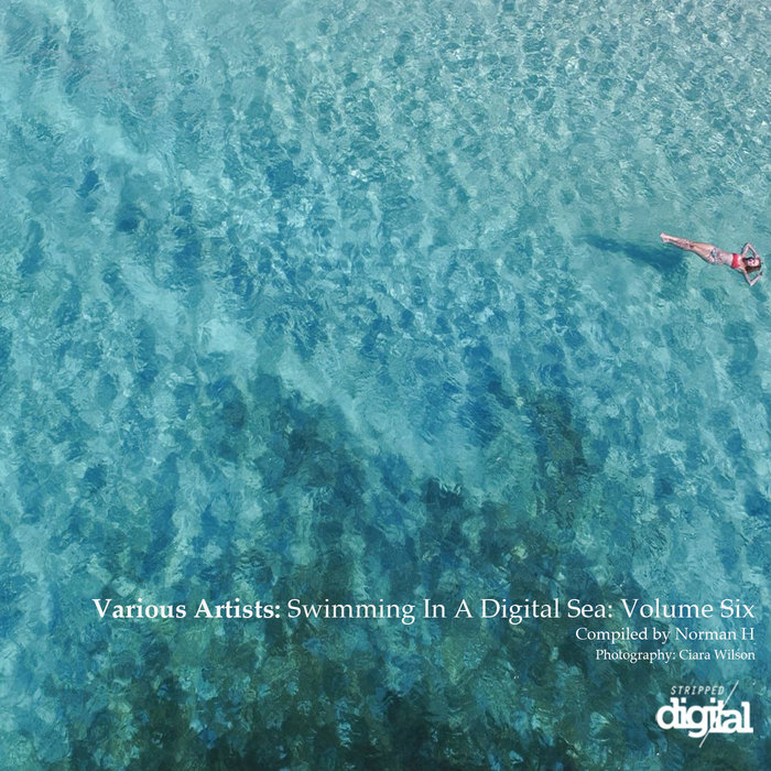 VA - Swimming In A Digital Sea Volume Six - Compiled By Norman H [024SDLP]