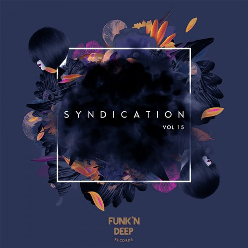 VA - Syndication, Vol. 15 [FNDCOMP023]