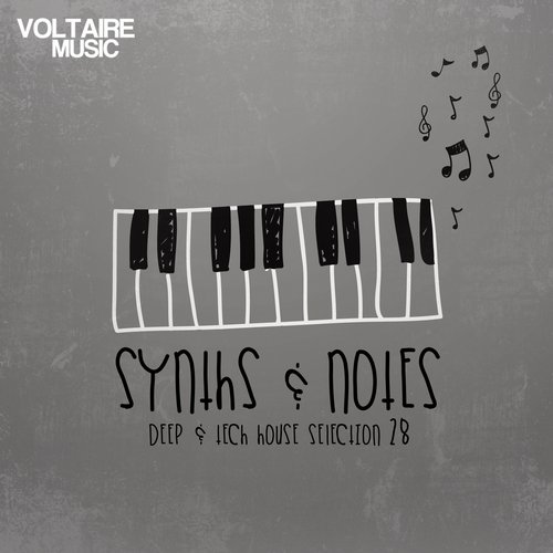 VA - Synths And Notes 28 [VOLTCOMP438BP]