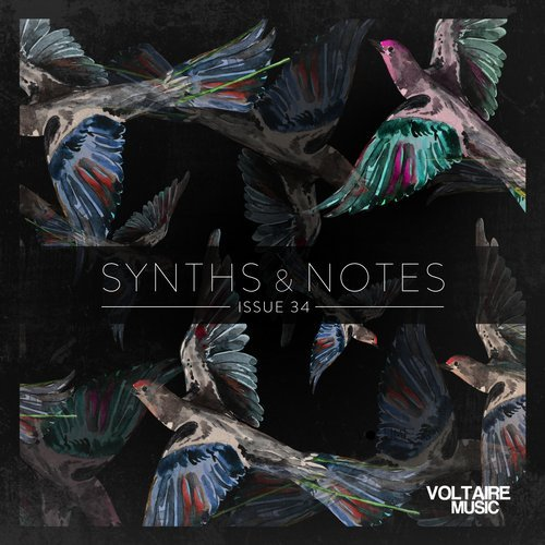 Synths And Notes 34 2017 [VOLTCOMP563]