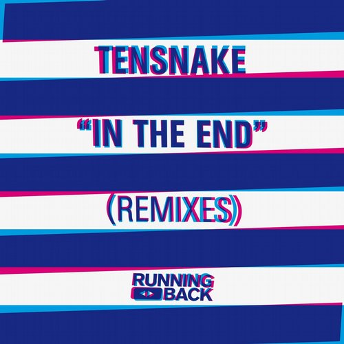 Tensnake - In The End (Remixes) [RB0155]