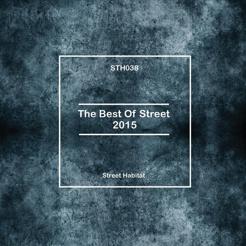VA - The Best Of Street 2015 [STH038]