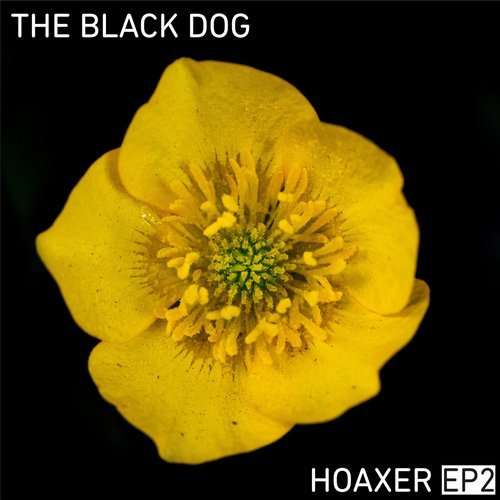 The Black Dog – Hoaxer EP2 [DUSTDL058]
