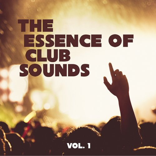 VA - The Essence of Club Sounds, Vol. 1 [HPFLTD108]