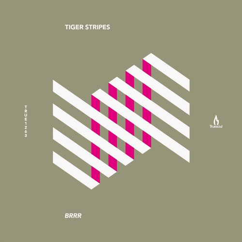 Tiger Stripes - Brrr [TRUE1263]
