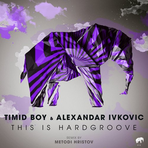 Timid Boy, Alexandar Ivkovic – This Is Hardgroove [SA013]