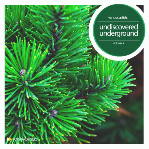 VA - Undiscovered Underground Vol 7 2017 [FM024LP]