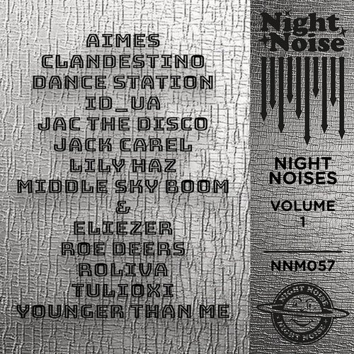 VA – Night Noises Vol 1 [NNM057]