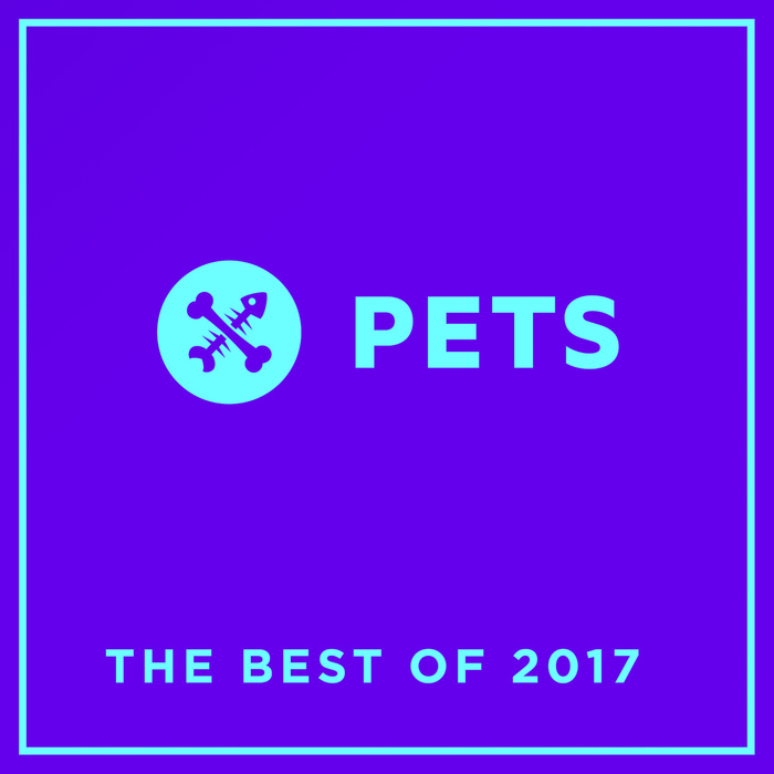 VA – PETS Recordings: The Best Of 2017 [PETSDIG006]