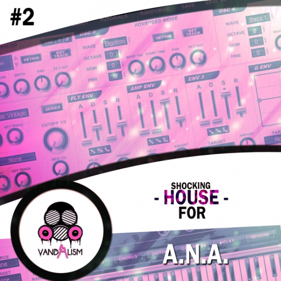 Vandalism Shocking House ANA 2 For SONiC ACADEMY ANA PRESET