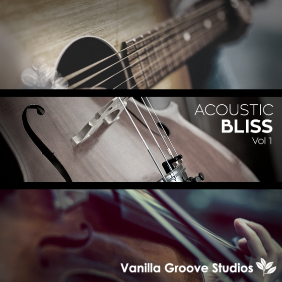 Vanilla Groove Studios Acoustic Bliss Vol 1 WAV