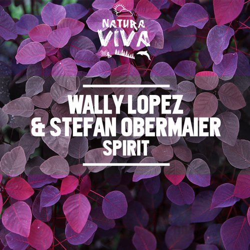 Wally Lopez, Stefan Obermaier - Spirit [NAT467]