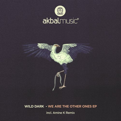 Wild Dark – We Are The Other Ones EP [AKBAL166]