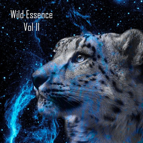 VA - Wild Essence, Vol. II [DSVA004]