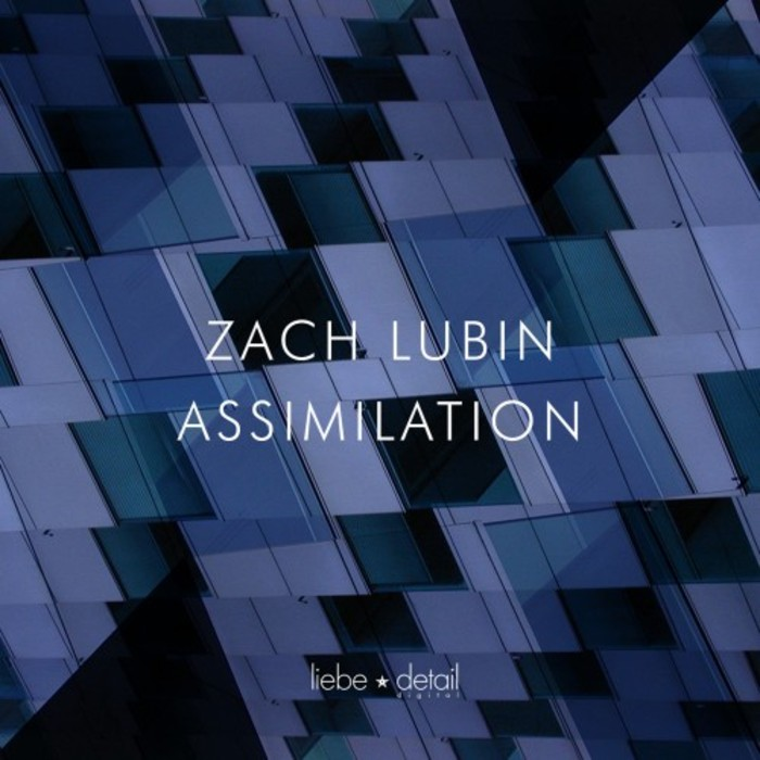 Zach Lubin - Assimilation [LDD035]